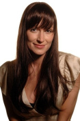 BREATHTAKING brunette WIG long straight BROWN MIX