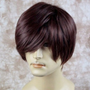 Classic Handsome Layered Long Bangs Man Wig Short Dark Auburn Men's Full Wig UK