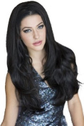 Annabelle's Wigs Black, Gently Layered 3/4 Or Half Wig Hairpiece Extension