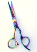 Professional Hairdressing scissors Rainbow Titanium