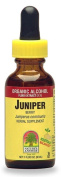Nature's Answer Juniper Berries Extract, Organic, 30ml