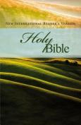 NIrV Holy Bible