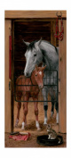 Mural Portfolio II Trompe L'Oiel Stable Door Accent Wall Sticker