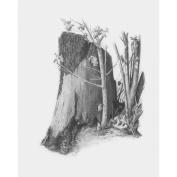 Sketching Made Easy Kit 23cm x 30cm -Tree Stump