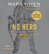 No Hero [Audio]