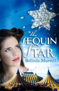The Sequin Star Download PDF Now