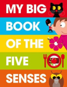 My Big Book of the Five Senses