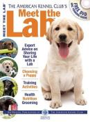 Meet the Lab