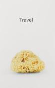 Haim Steinbach - Travel