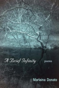A Brief Infinity: Poems