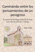 Caminando Entre Los Pensamientos de Un Peregrino [Spanish]