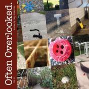 Often Overlooked. Vol. 2