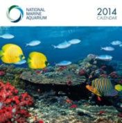 National Aquariums W