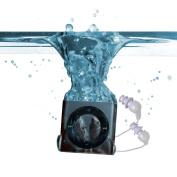 Underwater Audio Swimbuds Waterproof iPod Swimbuds Bundle