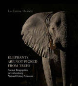 Elephants are Not Picked from Trees