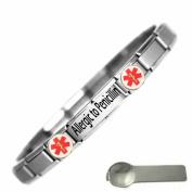 Allergic to Penicillin Medical Alert Nomination Style Stainless Steel Bracelet