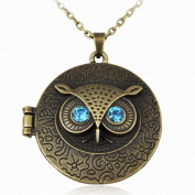 Vintage Brass Owl Locket Long Pendant Necklace with Blue Zircon Eye