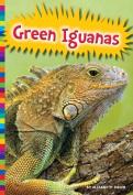 Green Iguanas (Lizards