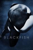 Blackfish [Region 4]