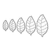 My Favourite Things Die-namics Die, Royal Leaves