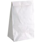 Hygloss Bagz For Fun, 13cm x 7.6cm x 25cm , 100/Pkg