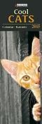 Cool Cats (Large Slim Line)