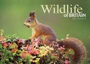 Wildlife of Britain A4: A4