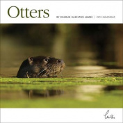 Otters Wall: 12x12