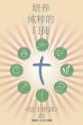 Making Radical Disciples - Leader - Mandarin Edition [CHI]