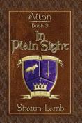 Allon Book 9 - In Plain Sight