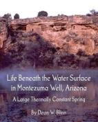 Life Beneath the Water Surface in Montezuma Well, Arizona