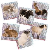 Barnyard Animal Prism Stickers