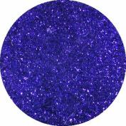 erikonail Fine Glitter Dark Purple ERI-24