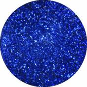 erikonail Fine Glitter Dark Purple ERI-26