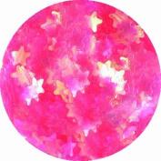 erikonail Hologram Star Pearl Pink ERI-62