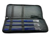 Grace Art Brush Storage Case w/ Bonus Brush Set BCL007