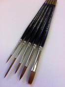 Pro Arte Prolene Watercolour & Multi Purpose Brush Set W1