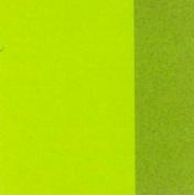 Amsterdam Acrylic 120Ml Greenish Yellow