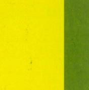 Amsterdam Acrylic 120Ml Primary Yellow