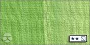 LUKAS 1862 Oil Colour 37 ml Tube - Permanent Green Yellowish