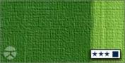 LUKAS 1862 Oil Colour 37 ml Tube - Sap Green