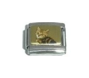 Striped Cat Picture Italian Charm Bracelet Jewellery Link