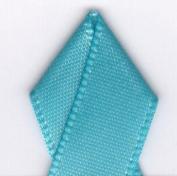 Papilion R074300230317100Y .220cm . Single-Face Satin Ribbon 100 Yards - Misty Turquoise