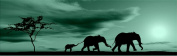 Elephants Family Canvas Wall Art Print, 5 Stars Gift Startonight African 40cm X 120cm