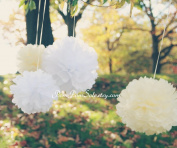 "PomPomSale Brand ""Fairy Princess"" - 6 Tissue Paper Pom Poms - Wedding / Baby Shower / Birthday Party / Nursery Decor"