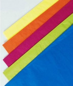 Bags & Bows by Deluxe 11-02-555 Caribbean Tissue Paper Assortment - Case of 480