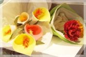 Crepe Paper Flower Kit- Carnations
