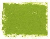 Art Spectrum Australian Leaf Green Light Tint