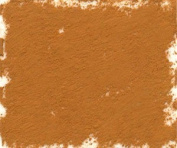 Great American Artworks Cinnamon Tint 2