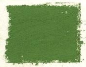 Art Spectrum Oxide of Chromium Pure Colour - Extra Large